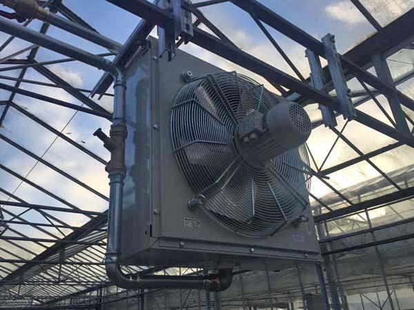 plant nursery biomass boiler in Honiton, Devon
